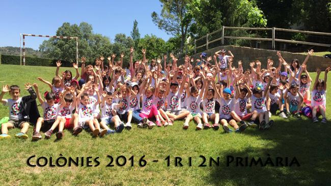 Colonies 12pri 2016